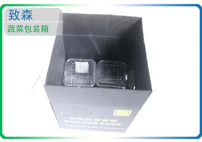中空板 蔬菜包装箱